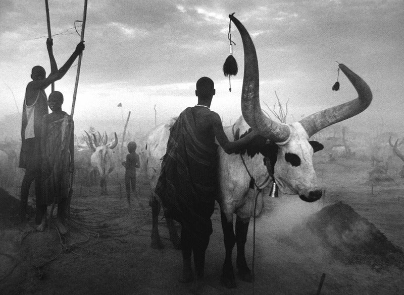 Dinka Group at Pagarau Cattle Camp, Southern Sudan 2
