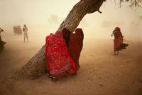 Dust Storm Horizontal