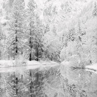 Snow Covered Reflections