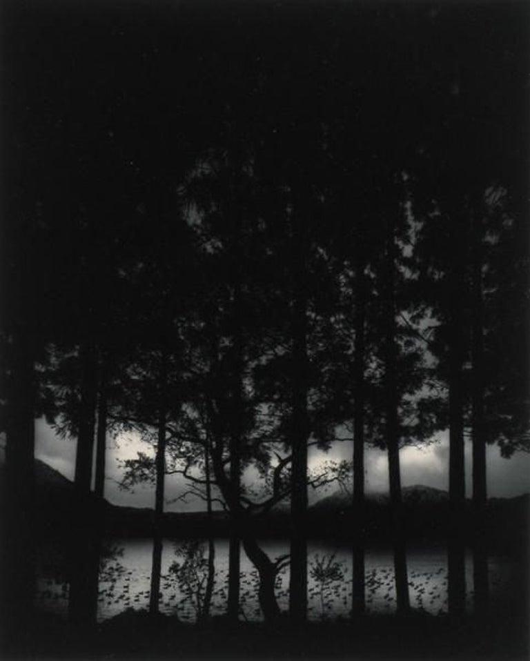 Pentti Sammallahti Numazama Lake, Fukushima, Japan 2005 Gelatin Silver print