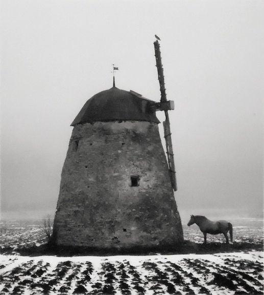 Gotland, Sweden (Horse & Windmill)