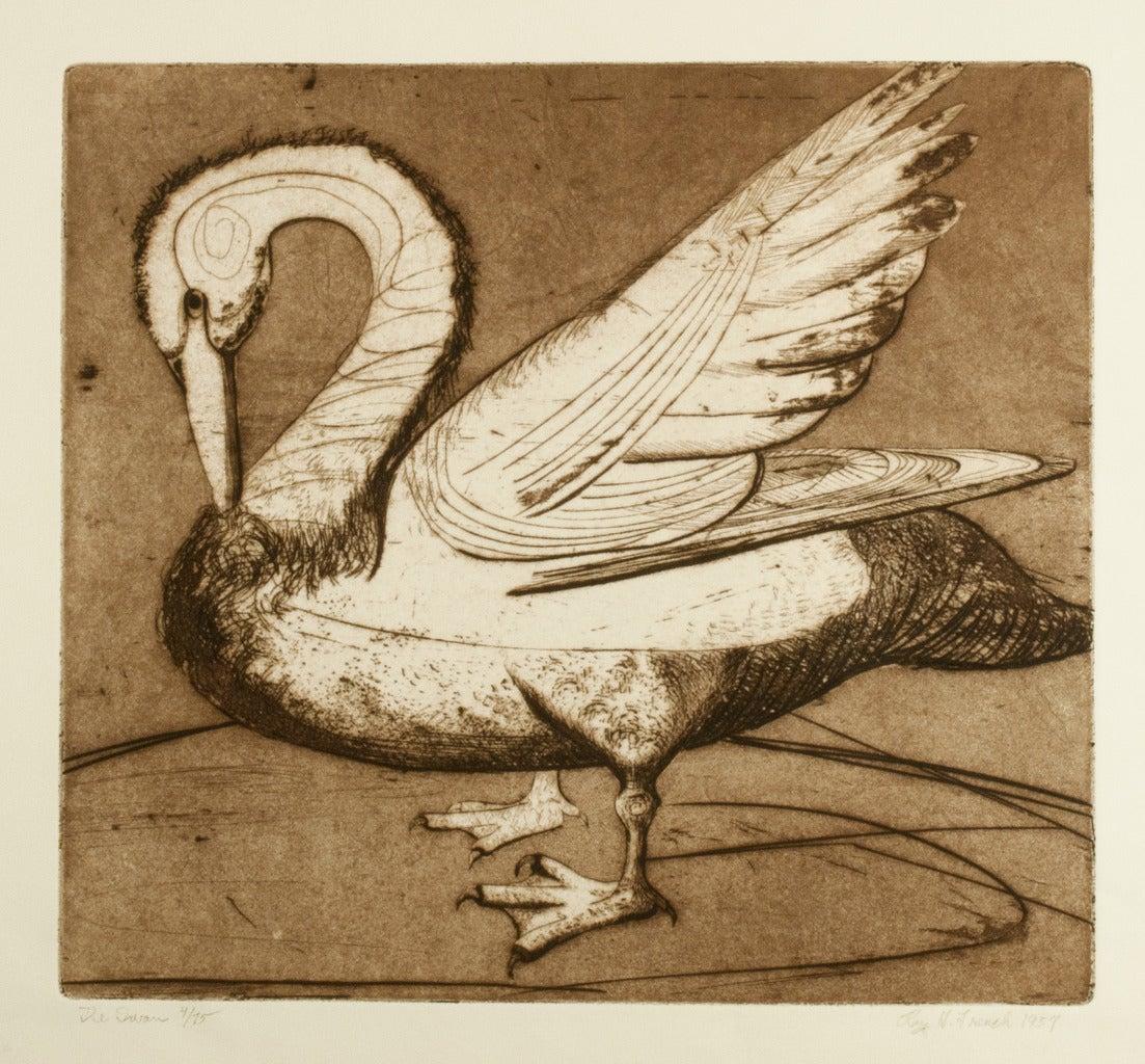 The Swan