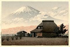 Mount Fuji, Narusawa (Nausawa no Fuji)
