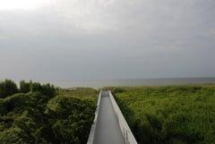 Erika's Walkway (Summer)