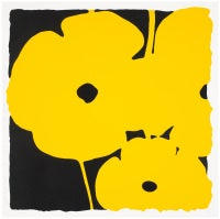 Poppies, June 7, 2011 (Yellow)