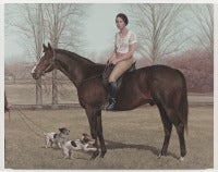 Chomp, equestrian portrait