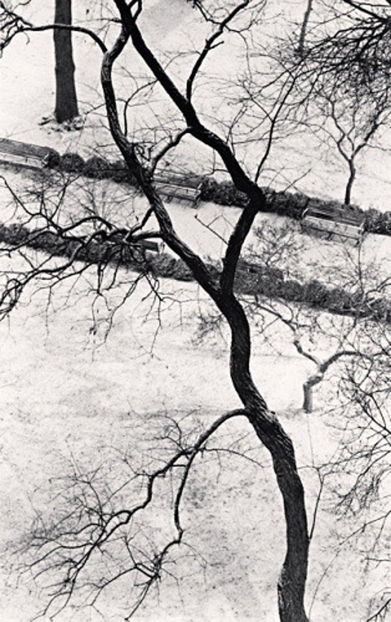 Michael Kenna Black and White Photograph - Homage to Kertesz, Gramercy Park, New York