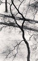 Homage to Kertesz, Gramercy Park, New York