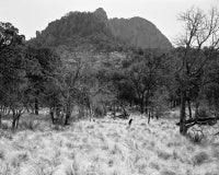 Emory Peak from Laguana Meadow, Big Bend