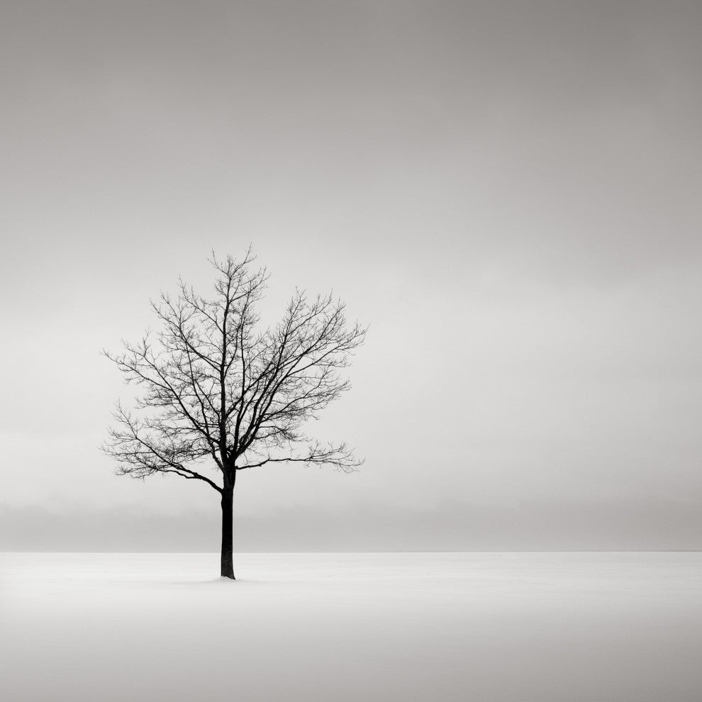 Image result for solitude art