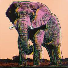 Elephant II.293