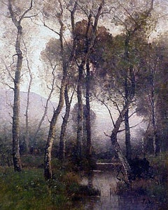 An Atmospheric Shady River