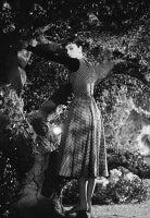 Audrey Hepburn On The Set of Sabrina, 1953