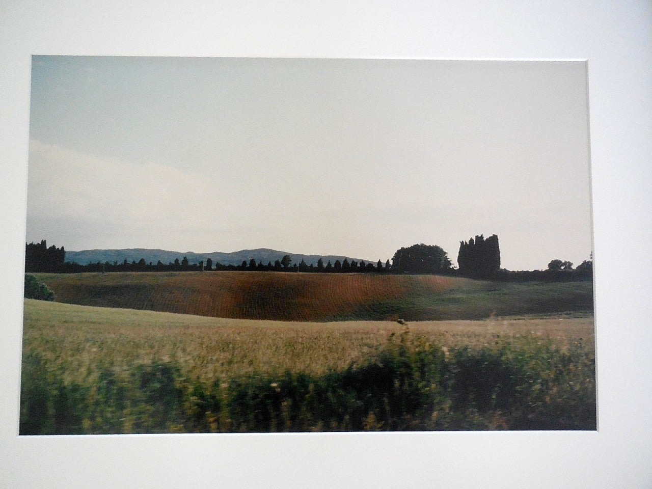 Tuscany, Hillside, 1996