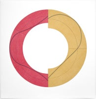 Split Ring Image C