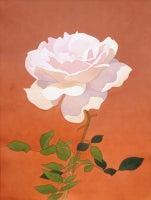 Pale Pink Rose on Orange Background
