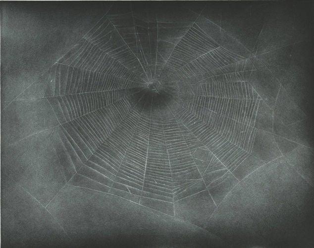 Untitled (Web 3)