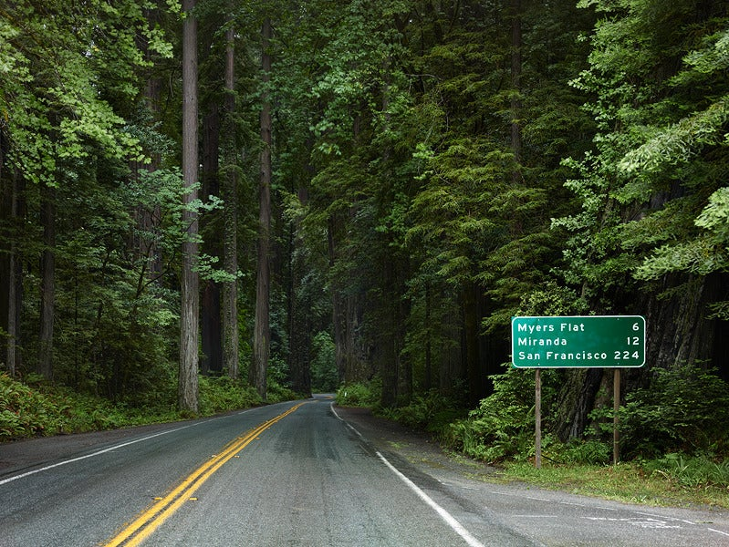 Redwood Highway Humboldt County California Photograph