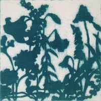 blue-green garden II
