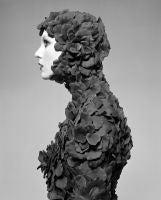 Rose Petal Suit, 2005