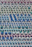 Umbrella Territory, Camaiore, Tuscany, Italy, 2010