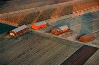 Hadley Tobacco Barns, Hadley, Massachusetts, USA, 1978