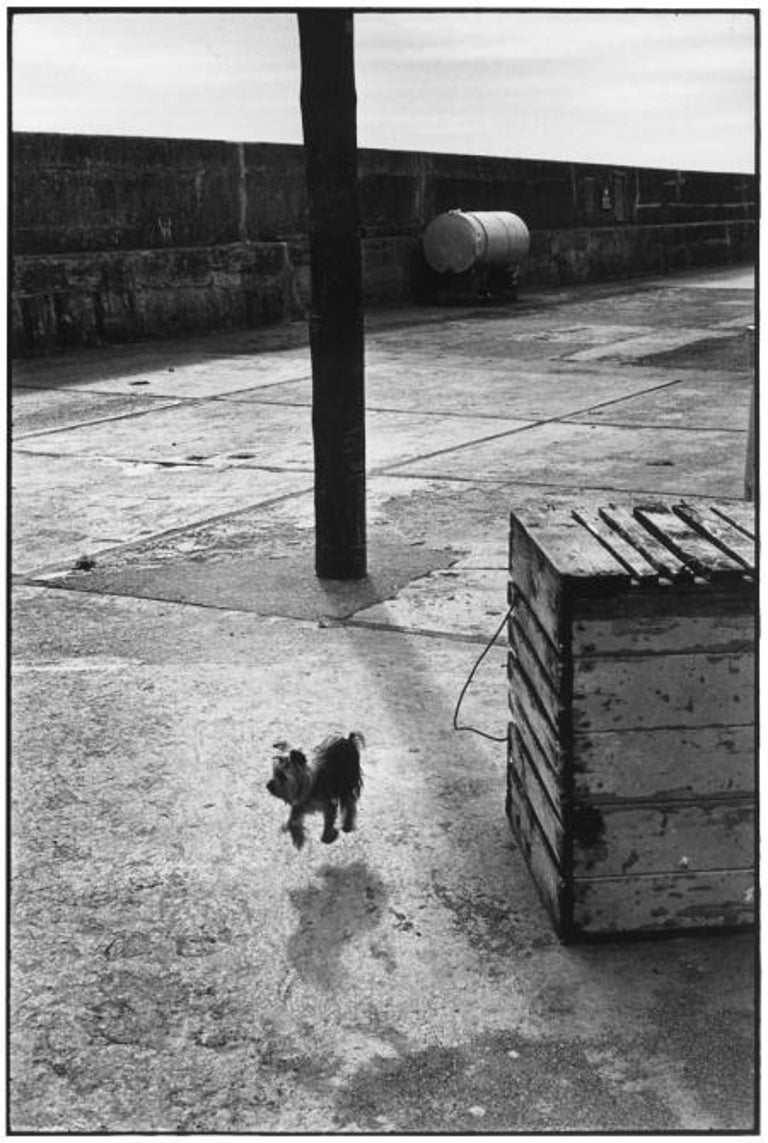 Elliott Erwitt Black and White Photograph - Ballycotton, Ireland, 1968