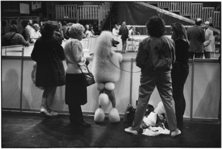 Elliott Erwitt Black and White Photograph - Birmingham, England, 1991