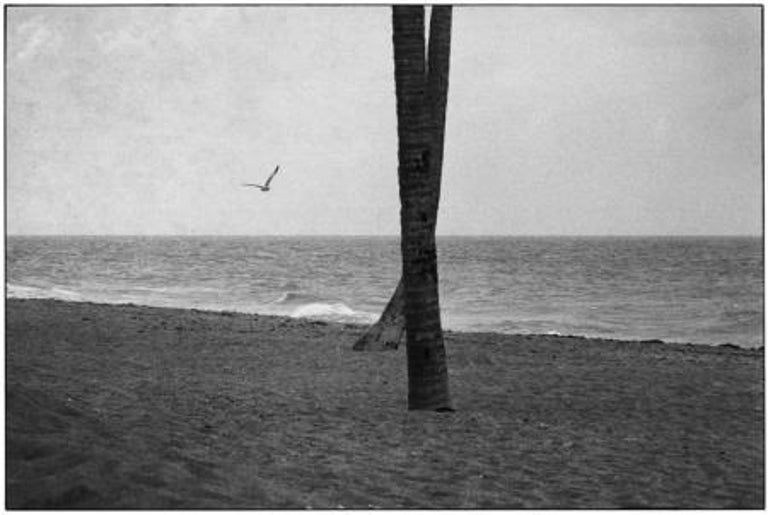 Elliott Erwitt Black and White Photograph - Daytona Beach, Florida, 1975