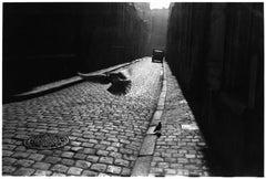 Orleans, France, 1952