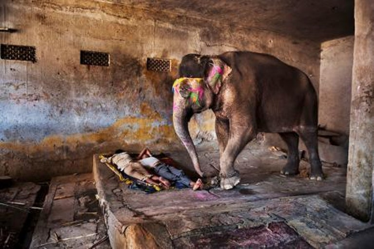 A Decorated Elephant and Sleeping People, India, 2012  - Photograph by Steve McCurry