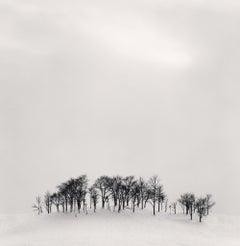 Afternoon Light, Shibeca, Hokkaido, Japan, 2004- Michael Kenna (Black and White)