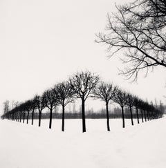 Perspective of Trees, Tsarskoe Selo, Russia, 1999 - Michael Kenna
