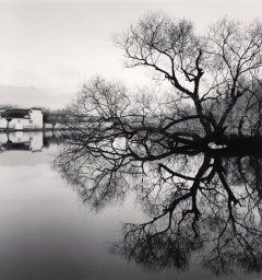 Reflected Tree, Hongkun, Anhui, China, 2007 - Michael Kenna