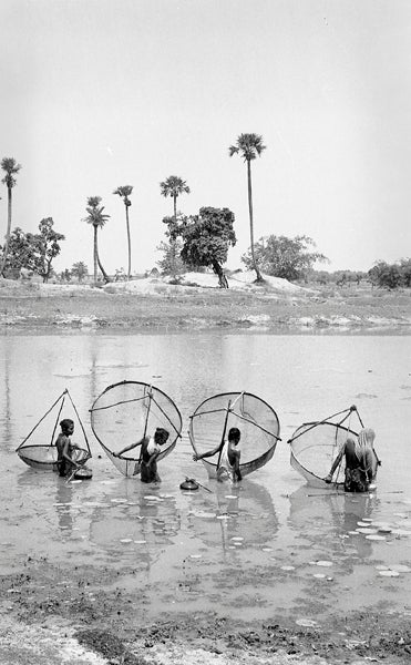 Jyoti Bhatt Women Fishing In A Village Pukur Pond