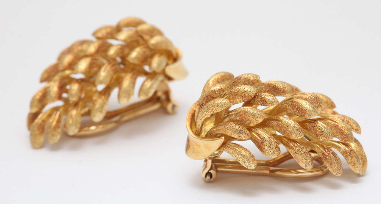 Yellow Gold Banana Clip On Earrings 4