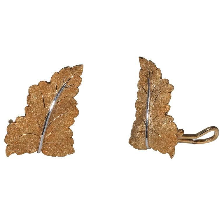 Golden leaf xxx were mistaken