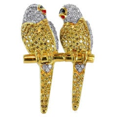 Delightful DIamond Parrot Pin
