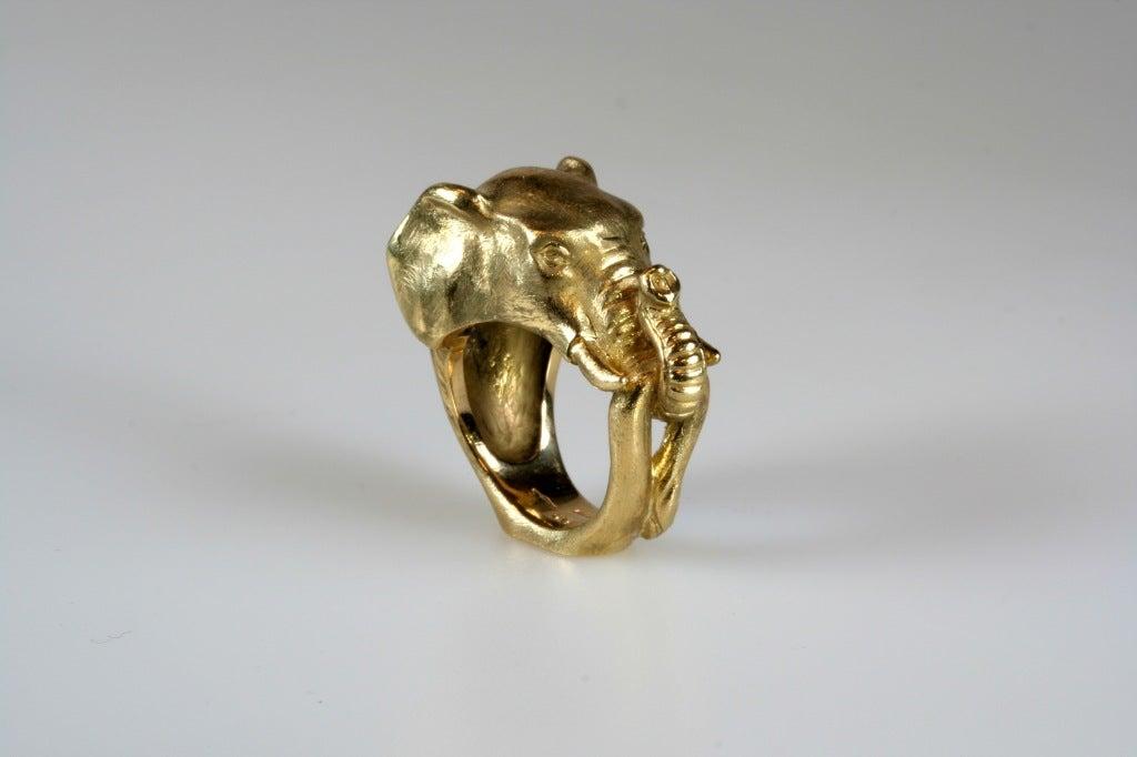 Elephant ring - photo#14