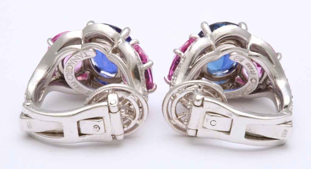 Tanagro Blue and Pink Sapphire and Diamond Earclips For Sale 1
