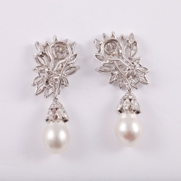 Diamond & South Sea Pearl Platinum Earrings 2