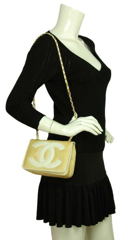 Chanel Vintage '86 Raffia Mini Shoulder Bag w. CC and Chain Strap 6