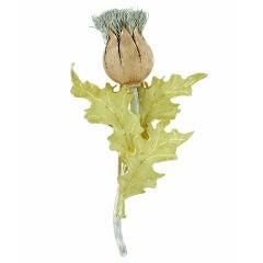 BUCCELLATI Thistle Brooch