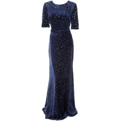JASON WU BLUE DEVORE VELVET GOWN **Best Golden Globes 2012 dress