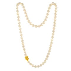 Tiffany & Co. South Sea Pearl Gold Necklace