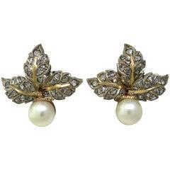 Buccellati Pearl Diamond Gold Leaf Earrings