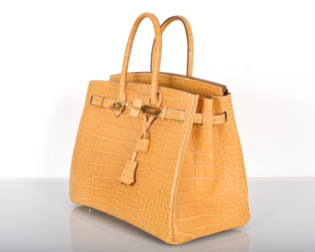 NEW COLOR HERMES BIRKIN BAG 35cm CROCODILE MATTE MAIS W GOLD HW at ...