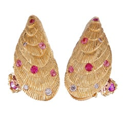 Exceptionally Detailed Shell Earrings