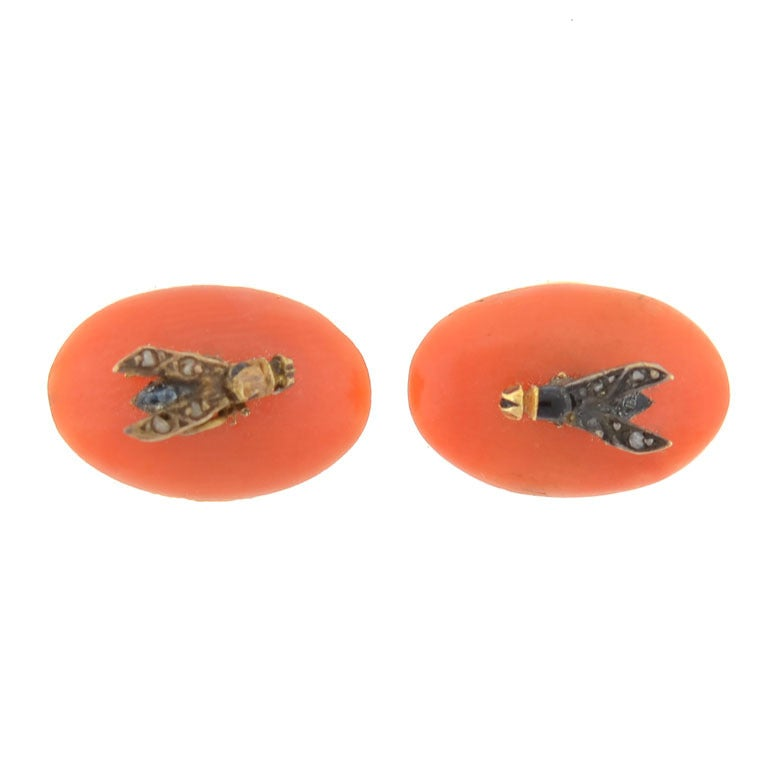 Victorian Coral Rose Cut Diamond Fly Buttons in Original Box For Sale