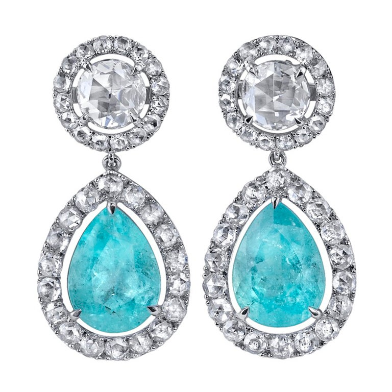 TAMIR Rare Paraiba Tourmaline and Rose Cut Diamond Earrings. 1